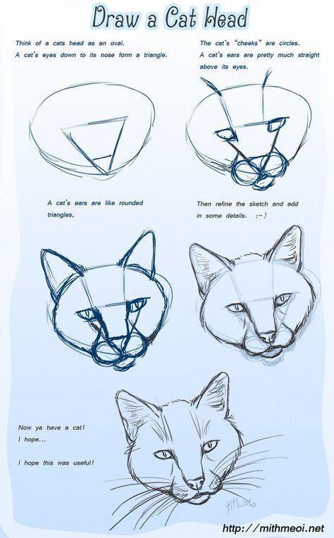 So zeichnet Ihr einen Katzen Kopf