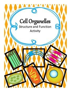Cell organelles FREE interactive notebook activity