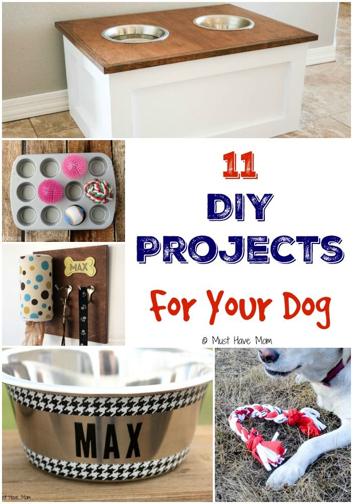 Do It Yourself Home Design: 25+ Best Ideas About Diy Dog Collar On Pinterest