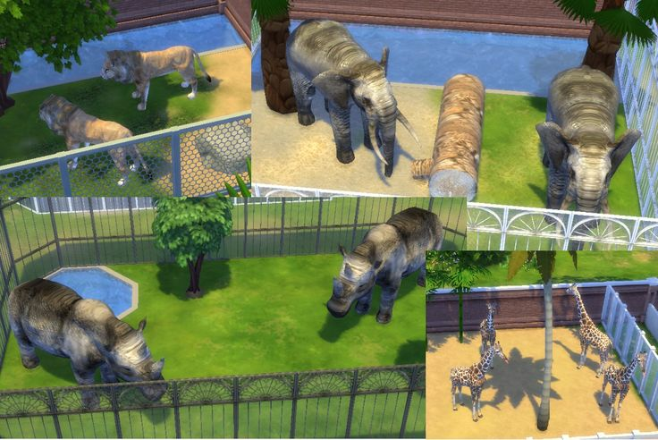 Untitled — My sims 4 Zoo animals! DOWNLOAD:... | Sims 4