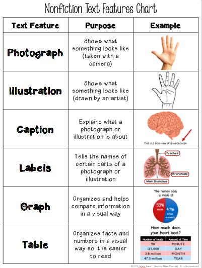 Free Text Features Chart | Text features | Pinterest | Text features ...