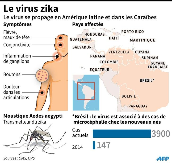 Zika virus is an arbovirus belonging to the same group as the virus of dengue and yellow fever. They are transmitted by mosquitoes. In humans the virus is responsible for Zika fever. The symptoms of Zika fever mimic those of a viral infection banale- fever, rash, headache, muscle pain etc. For further details visit our blog http://forumhealthcare.ca/ce-quil-faut-savoir-sur-le-virus-zika/.