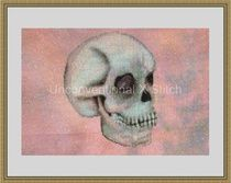 Skull cross stitch kit 1 of 1! http://www.unconventionalxstitch.com/apps/webstore/products/show/4563839