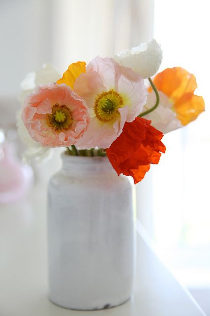 .Colors Combos, Flower Arrangements, Pretty Flowers, Beautiful Flowers, Gardens, Mason Jars, Iceland Poppies, Painting Jars, Favorite Flower