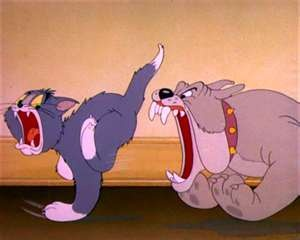 Image detail for -Tom And Jerry Bulldog Pictures Cartoon-Tom-And-Jerry-Bulldog-And-Tom ...
