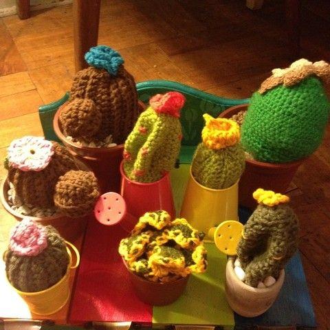 Diferentes cactus, $3 mil pesos cada uno
