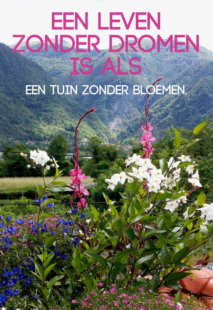 Citaten Over Bloemen : Een leven zonder dromen is als tuin bloemen