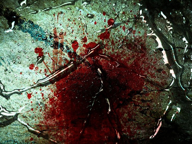 Blood Wallpapers 960×720 Blood Wallpaper (42 Wallpapers) | Adorable Wallpapers