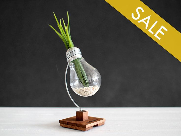 "An awesome personalized Gift for your fellows! Give them something like never before - the ""Beta"" upcycled lightbulb vase.  http://etsy.me/2jAERQM #cuteness #designergift #handmade"