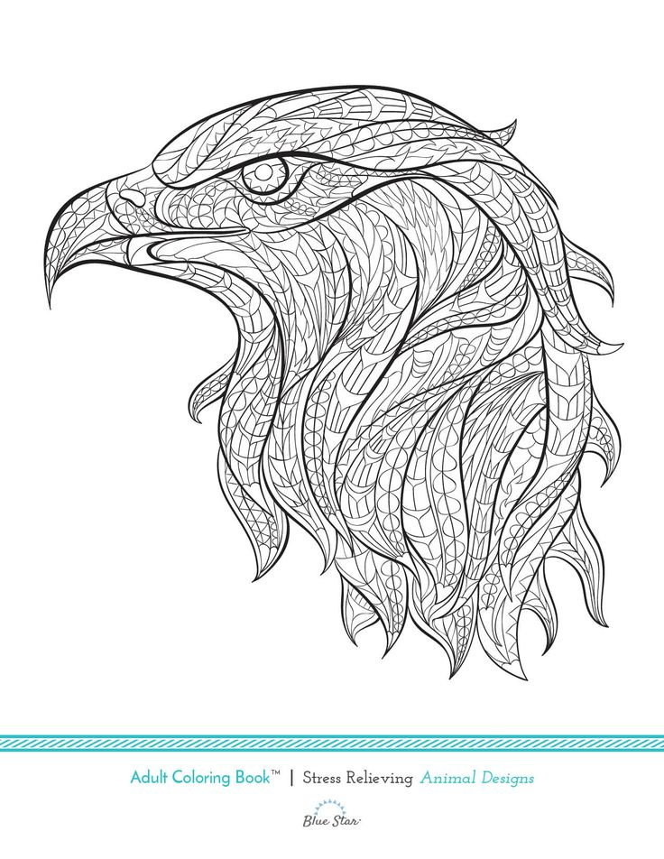 124 best Coloring pages-Nature images on Pinterest Coloring books - new eagles to coloring pages