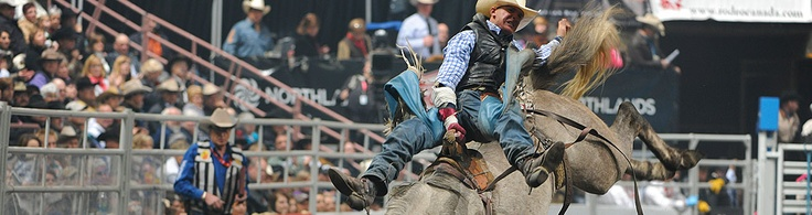 Canadian Finals Rodeo 2013... bet cowboys use ice after a big rodeo.