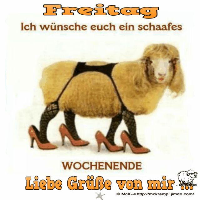 Freitag - McKrampi 100% Free                                                                                                                                                      Mehr
