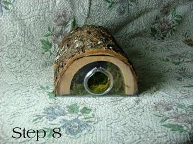 Create an extra-humid area for your hermit crab! DIY Log Humidity Hide - PetDIYs.com