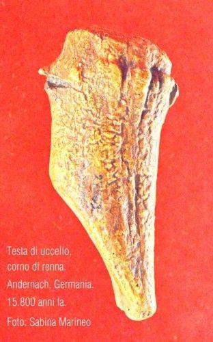 testa di uccello, corno di renna, Andernach, 15.800 anni fa.