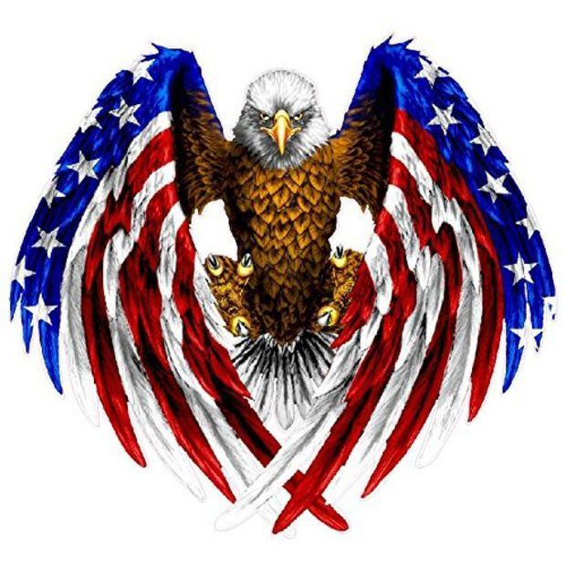 Bald Eagle American Flag sticker / decal