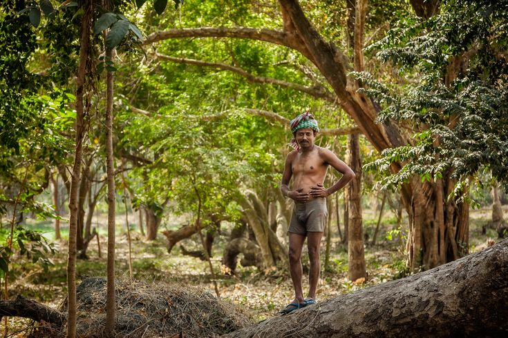 I photographed this worker in the grounds of the lovely Botanical Gardens in Kolkata, India.