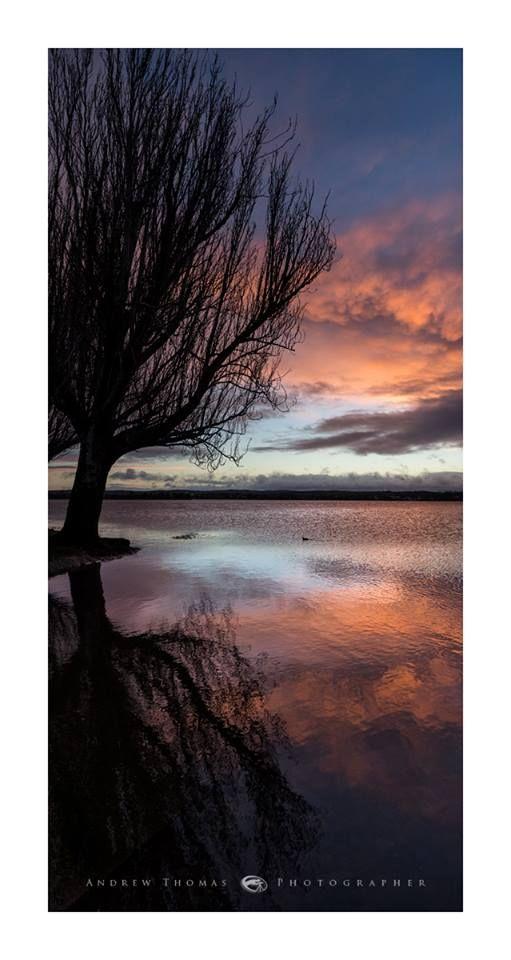 Lake Wendouree, evening