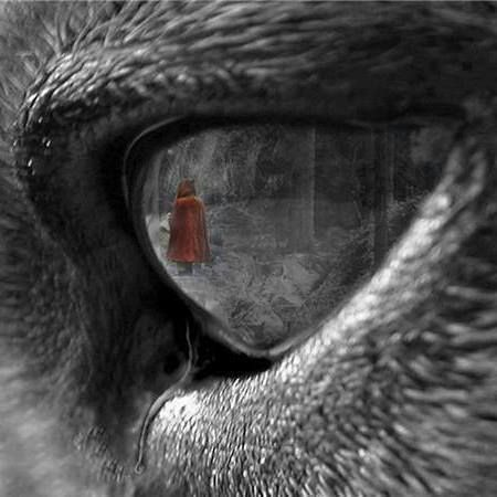 I love how little red riding hood is in the wolves eyes.