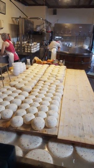 Clara Maria Cheese Farm & Clog Factory - see more @ German in the Afternoon Activities Activities to help your little ones learn German one afternoon at a time!