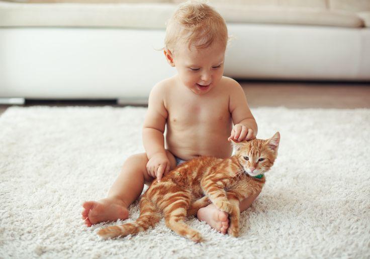 Animalele de casă şi copiii pot fi cei mai buni prieteni