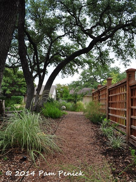 My side yard used to be one big sea of lawn. Here's how I converted it to a drought-tolerant, deer-resistant garden, including before-and-after pics. | Digging