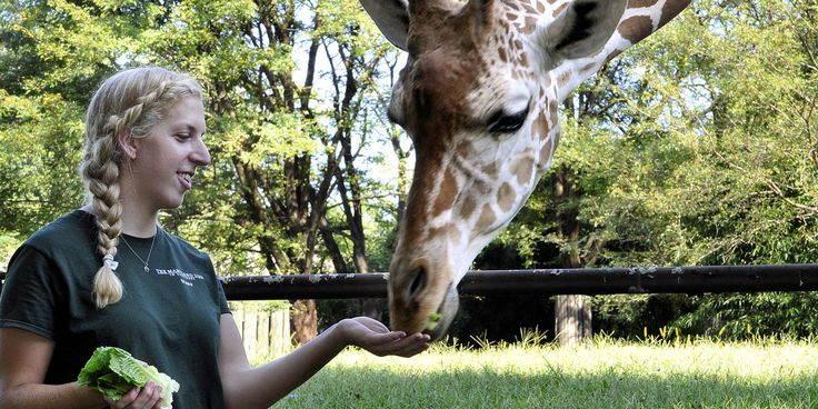 """So you want to be a zoo keeper? Get my life! """"Robin Sutker always knew she wanted to work with animals. At the Maryland Zoo in Baltimore, she hangs out with everything from lion cubs to parakeets."""" Via @Cosmopolitan"""