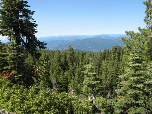 Northern California Mountain Wilderness Land for Sale