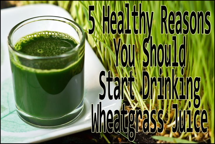 Wheatgrass is one of the healthiest juice on the planet and is a great source of minerals and vitamins. Learn more herehttp://www.extremenaturalhealthnews.com/5-healthy-reasons-you-should-start-drinking-wheatgrass-juice/