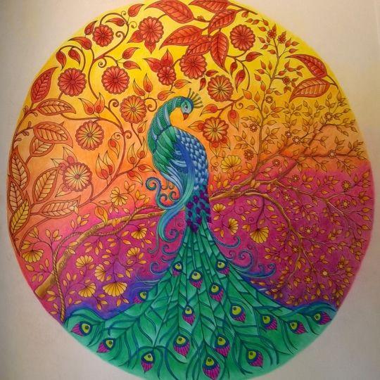 Johanna Basford Colouring Gallery In 2019 Pauw