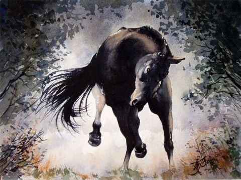 Marcel BOOS - Cheval noir