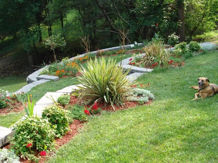 Landscaping Hill In Back Yard