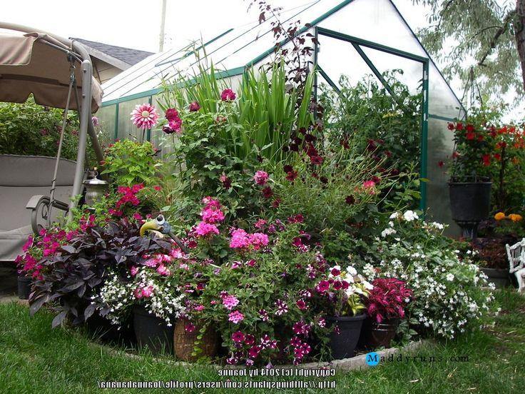 GardeningRose Garden Tips And Ideas Gardening Landscape