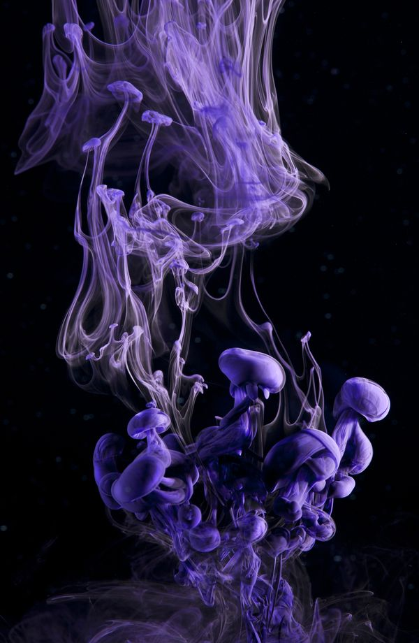 Playing with fluids on glasses of water! via http://bitaites.org - Demersal by Luka Klikovac, via Behance