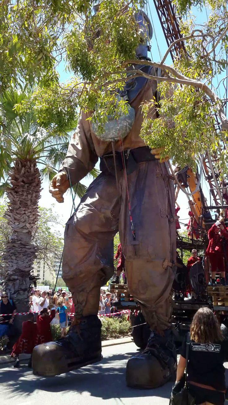'Diver Giant' marionette walking along Riverside Drive Perth. 15/02/2015