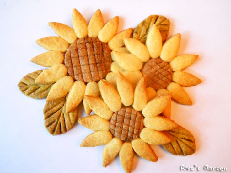 Rika's Garden: Biscotti Girasole♪