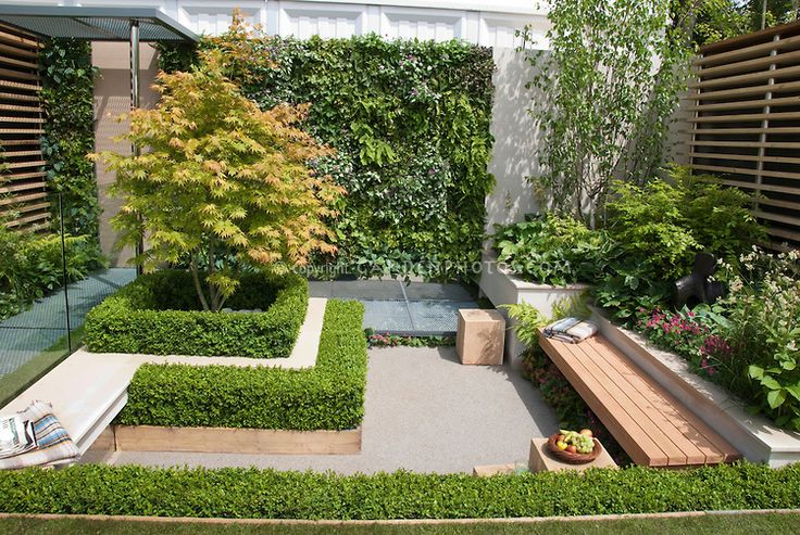 Landscaping A Small Backyard For Privacy :  Small Spaces, Small Outdoor Spaces, Small Gardens, Outdoor Gardens