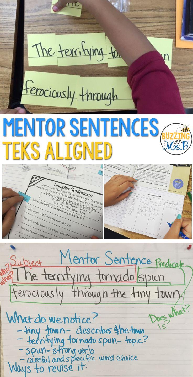 Mentor Sentences Grammar Notebook for the first