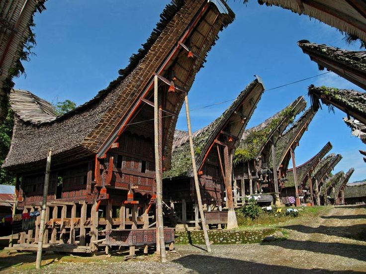 Tongkonan architecture (Sulawesi, Indonesia)