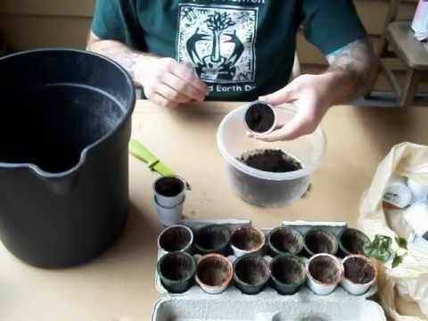... coffee keurig k cup coffee recipes tiramisu coffee see more 16 4