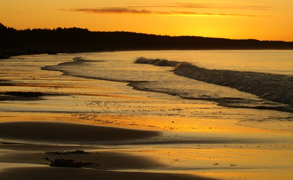 Rose Isle beach, Forest of Moray
