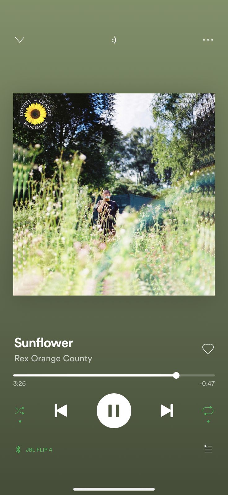 Sunflower, a song by Rex Orange County on Spotify in 2020
