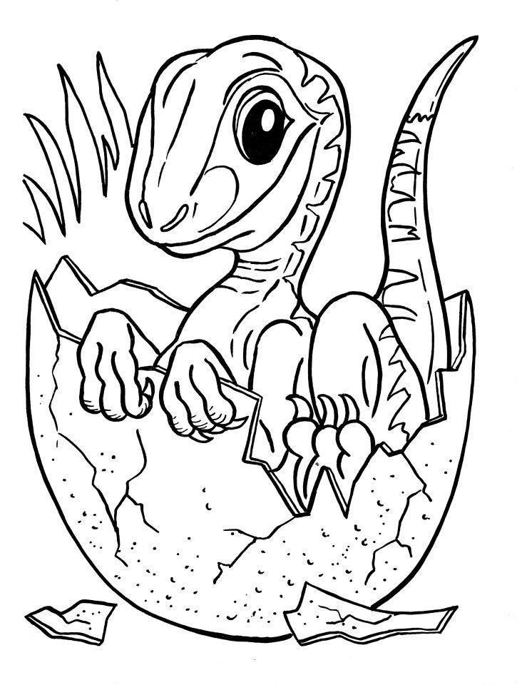 dinosaurs drawings free history - Jurassic Park Coloring Book