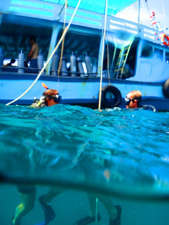 55 best diving in thailand images on pinterest snorkeling koh phangan and sandy beaches - Koh tao dive center ...