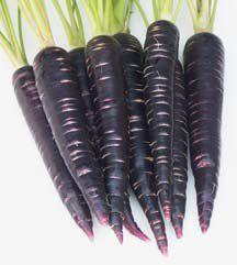 pan roasted black carrots purple potatoes
