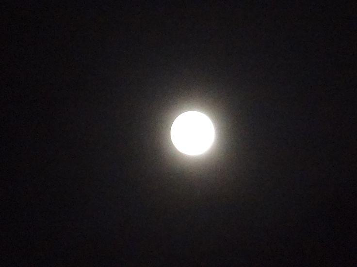 Jugando a Ser Astrónomos-El Eclipse  de Luna Roja