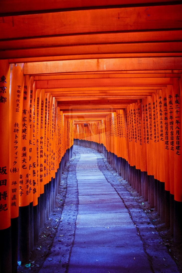 Fushimi Inari #kyoto #japan