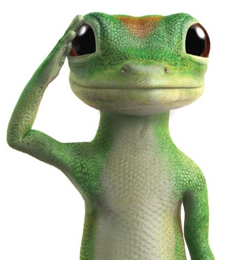 1000+ images about Geico Gecko - 28.9KB