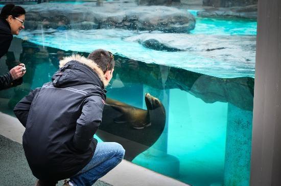 Zoológico de Ueno-Tokyo Japón