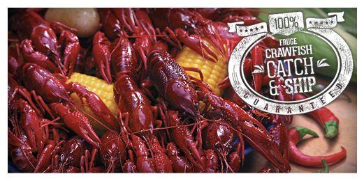 Live Crawfish for Sale| Louisiana Crawfish Shipped Direct To You