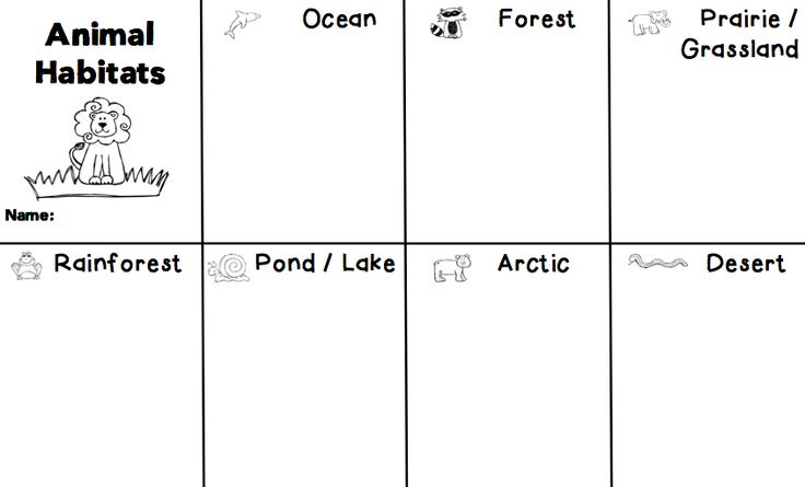 1000 images about science animal adaptations habitats on pinterest project based learning. Black Bedroom Furniture Sets. Home Design Ideas